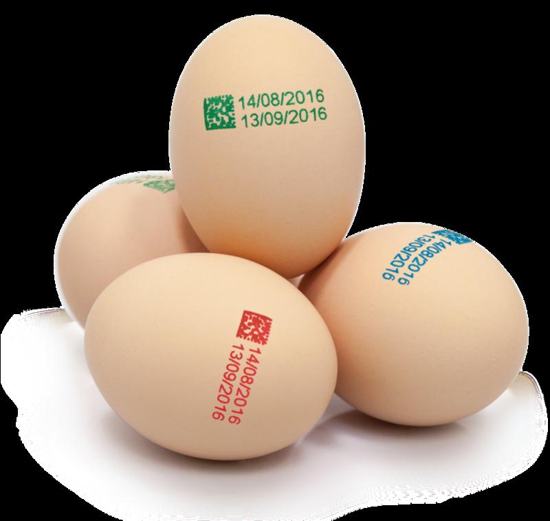 鸡蛋喷墨.png